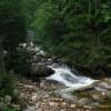Dziki Wodospad 5